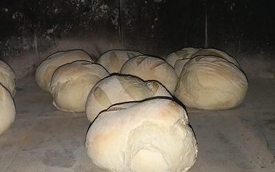 Devetošolci pečejo kruh in belokranjsko pogačo